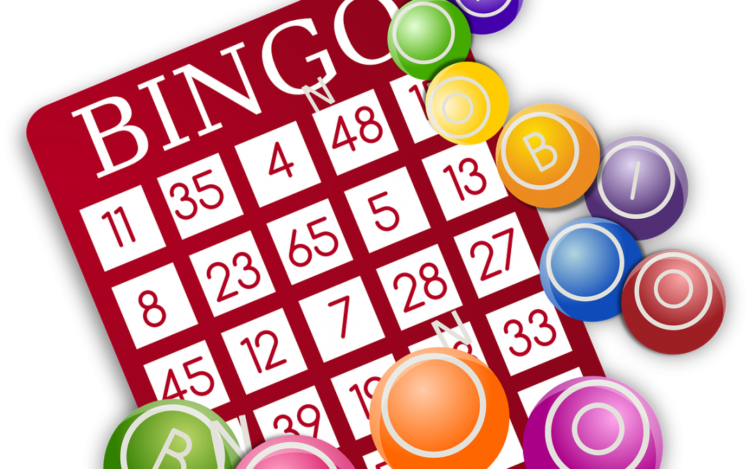 Bingo the 411 on fun!